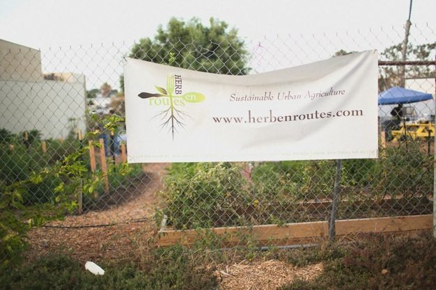 San-Diego-open-air-bistro-all-organic-catering-eco-caters-Herb-En-Routes-urban-farm-pop-up-dinner-Leylla-Badeanlou-my-local-habitat-fresh-garden-menu-local-54 catering san diego wedding catering