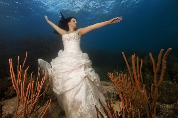 Best-wedding-photos-under-water-wedding-photos-wedding-photographer-california-beauitufl-wedding-dress-08 catering san diego wedding catering