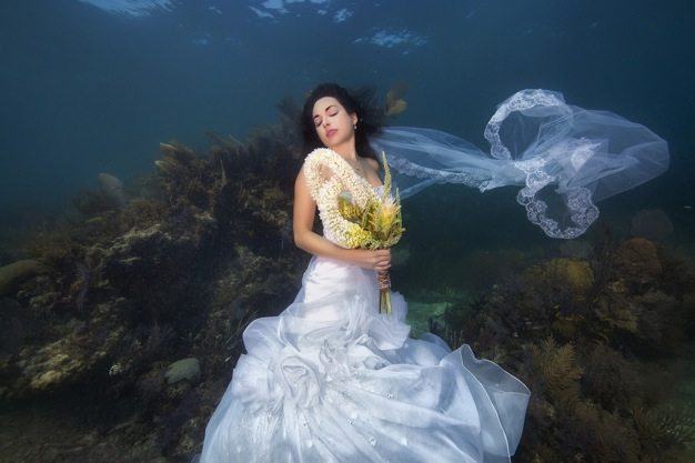 Best-wedding-photos-under-water-wedding-photos-wedding-photographer-california-beauitufl-wedding-dress-12 catering san diego wedding catering