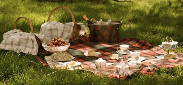 Picnic-ideas-how-to-have-a-picnic-organic-catering-wedding-ideas-engagment-photos-cheap-date-green-ideas-7 catering san diego wedding catering